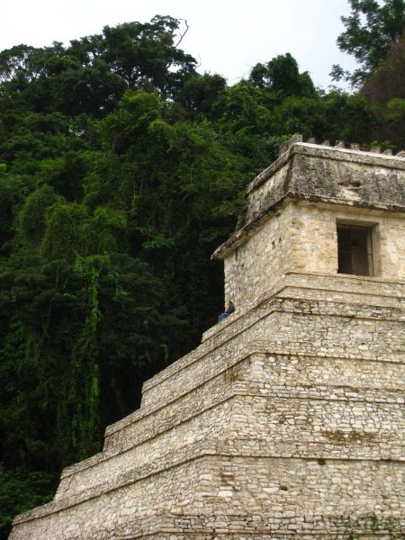 IMG_4387_palenque.JPG